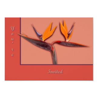 Bird of Paradise Personalized Announcements
