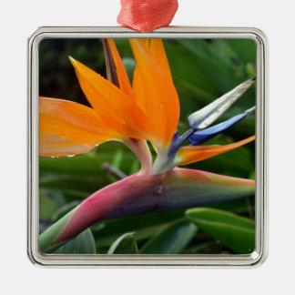 Bird Of Paradise Metal Ornament