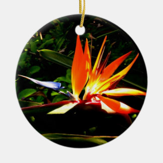 Bird of Paradise Ornament
