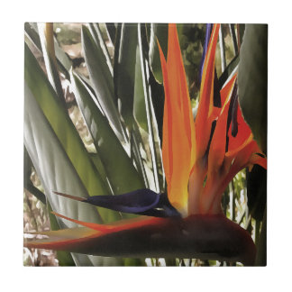 Bird of Paradise (Strelitzia) Ceramic Tile