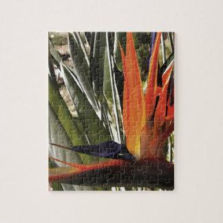 Bird of Paradise (Strelitzia) Jigsaw Puzzle