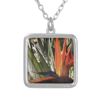Bird of Paradise (Strelitzia) Silver Plated Necklace