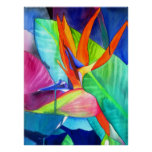 Bird of Paradise Strelitzia watercolour flower art Poster