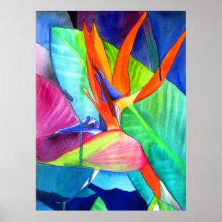 Bird of Paradise Strelitzia watercolour flower art Poster