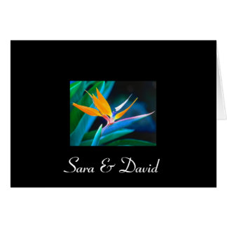 Bird of Paradise Thank You Card