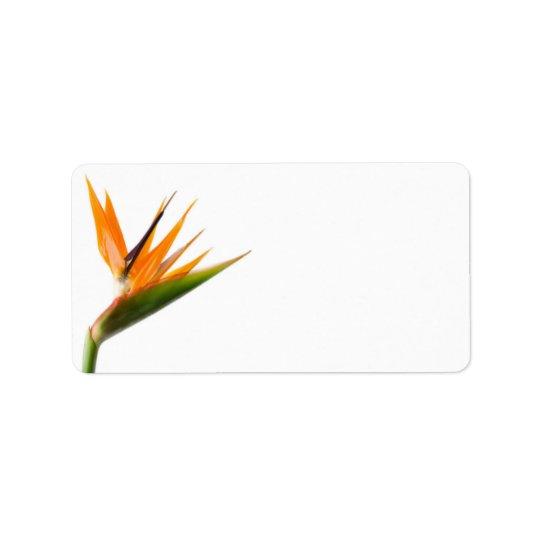 Bird of Paradise Wedding Labels