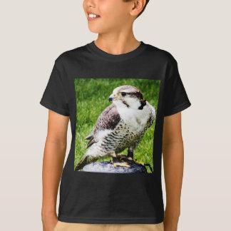 Bird of Prey #1-peregine falcon T-Shirt
