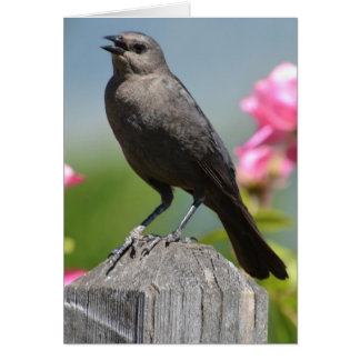 Bird on a Fence Post Greeting Card