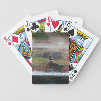 bird on a wall bicycle playing cards