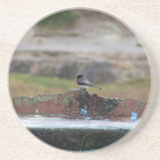 bird on a wall coaster