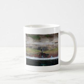 bird on a wall coffee mug