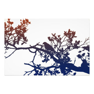 Bird on the branch photo print