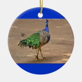 Bird Peacock Round Ceramic Decoration