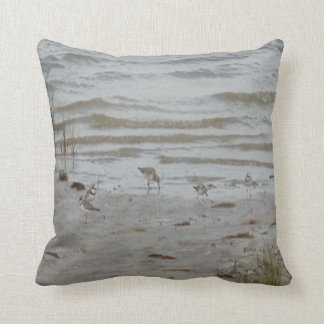 bird photo #19- piping plover and killdeer cushion