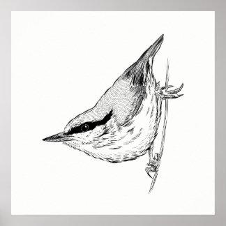 Bird Poster / Wall Art Nuthatch