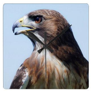 Bird Red Tail Hawk Wallclock