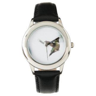 Bird Ruby-throated Hummingbird Watch