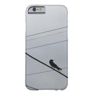 Bird 's Beautiful Photo Modern Art iPhone6/6s Case