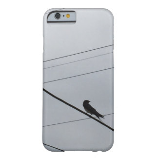 Bird 's Beautiful Photo Modern Art iPhone6/6s Case Barely There iPhone 6 Case