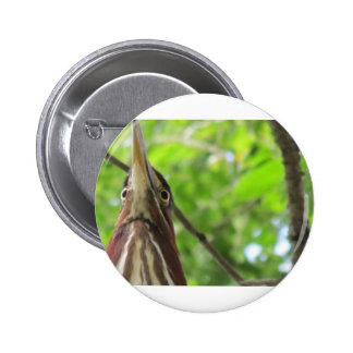 Bird s Eye View Pins
