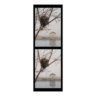 Bird s Nest Diptych Posters