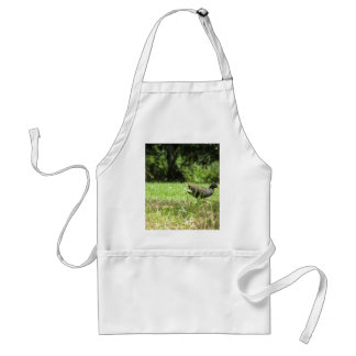Bird s the word aprons