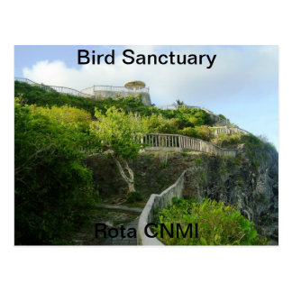 Bird Sanctuary Postcard