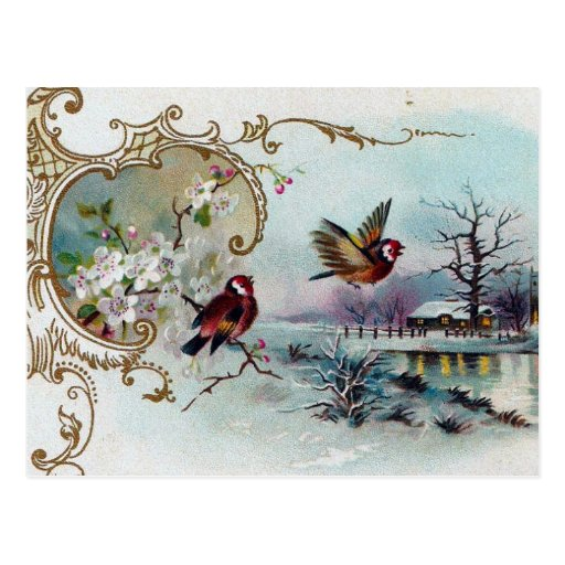 Bird Scene Post Cards