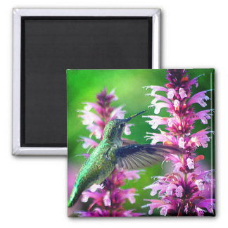 Bird Song Magnet