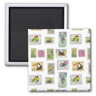 Bird Stamps on White Collections Square Magnet