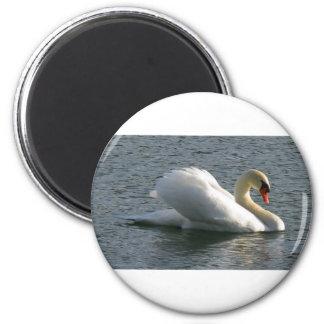 Bird Swan 6 Cm Round Magnet