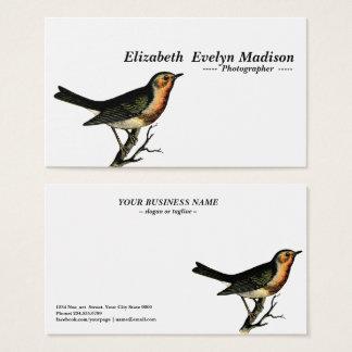 bird vintage engraving business card