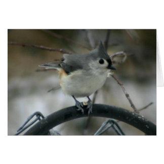 Bird Watching Card