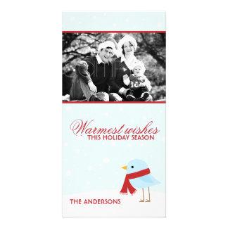 Bird with Scarf Christmas Photocards Card