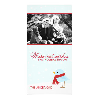 Bird with Scarf Christmas Photocards Personalised Photo Card