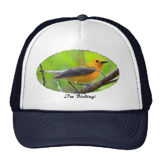 Birder's Hat