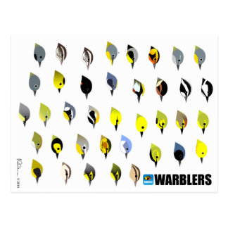 BirdFace Warbler Postcard