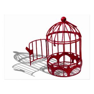BirdHouse092110 Postcard