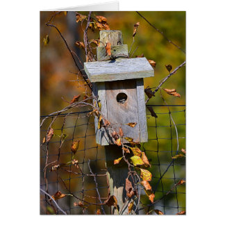 Birdhouse Notecard