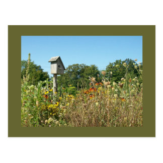 Birdhouse & Wildflowers Postcard