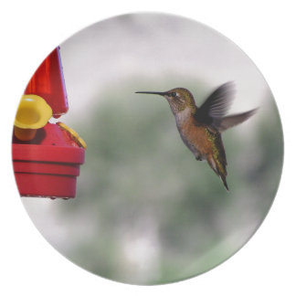 Birdie Yum-Yums Plate