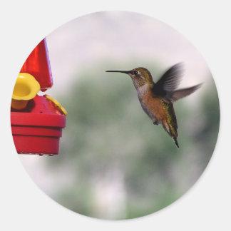 Birdie Yum-Yums Round Sticker