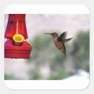 Birdie Yum-Yums Square Sticker