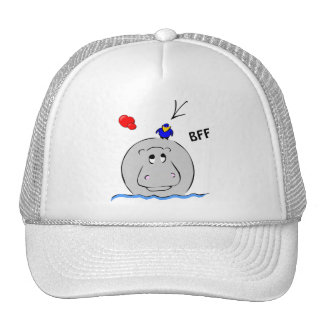 Birdie's Search for Hippo Cap
