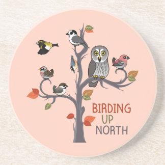 Birding Up North Coaster