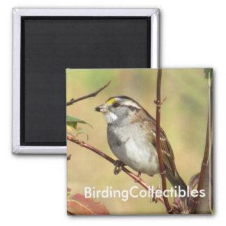 BirdingCollectibles Magnet