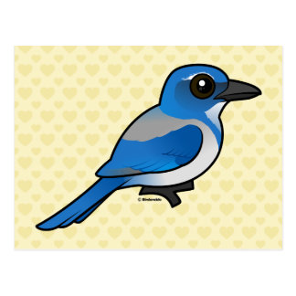 Birdorable California Scrub-Jay Postcard