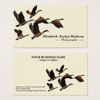 birds 470 business card