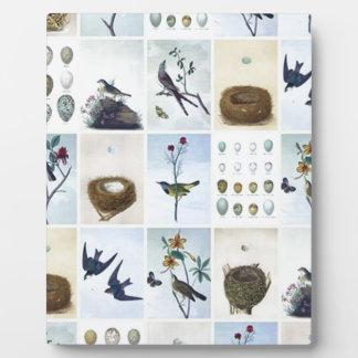 Birds and Nests Plaque