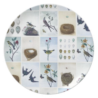 Birds and Nests Plate